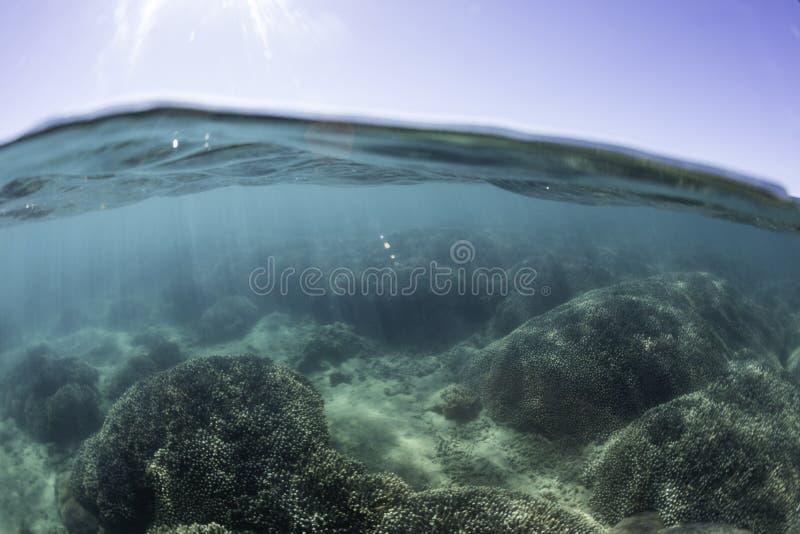 Split view of Reef, Hervey Bay, QLD royalty free stock photo