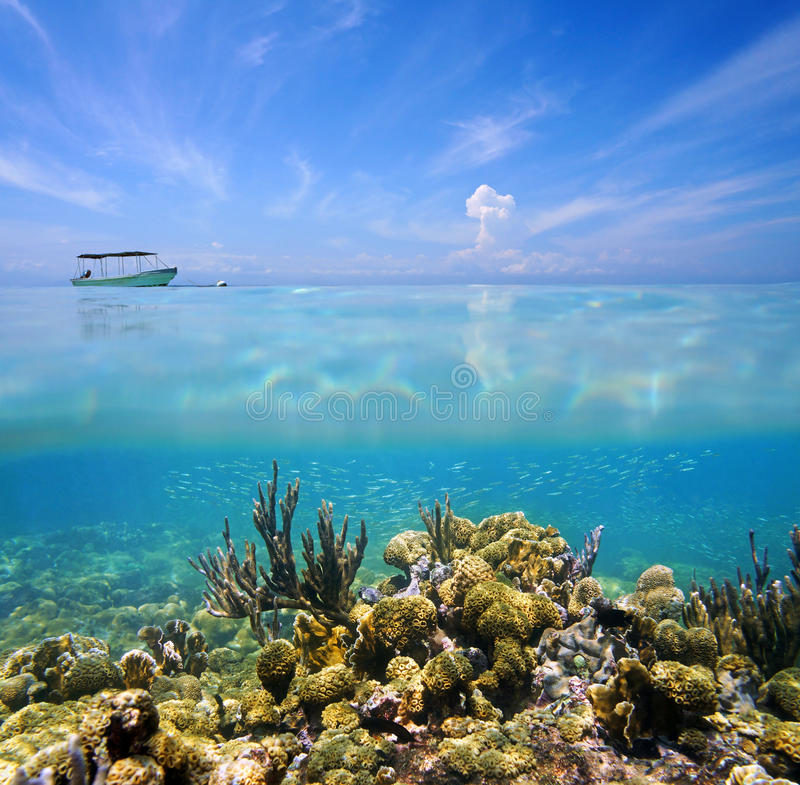 Split view sky and ocean floor. Split view with coral reef ocean floor and blue sky with cloud reflection on water surface royalty free stock photo