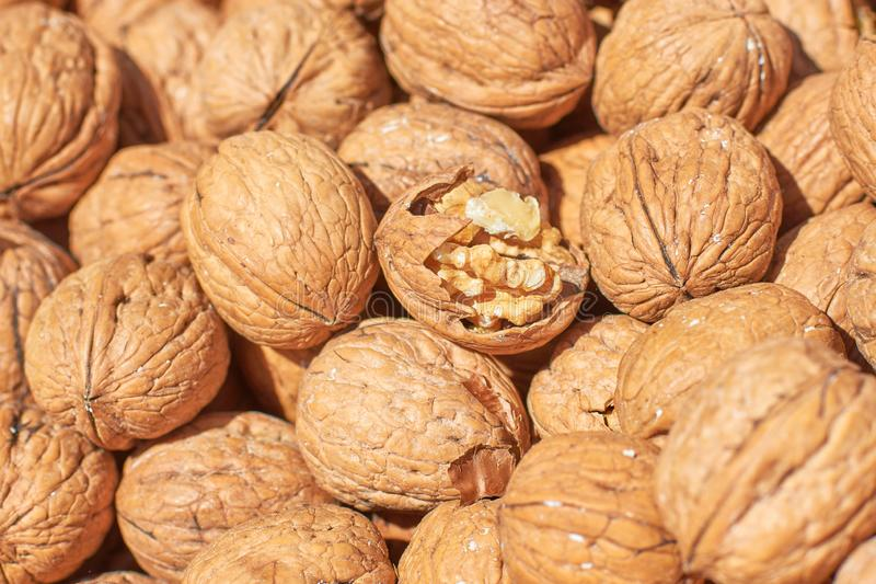 Split walnut on the background of whole nuts, concept: shared, fragility, originality. Close-up stock photography