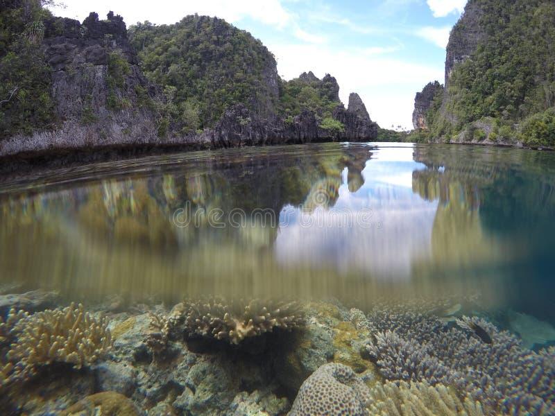 Splitshot del coral y de los karsts en Misol, Raja Ampat, Indonesia imágenes de archivo libres de regalías