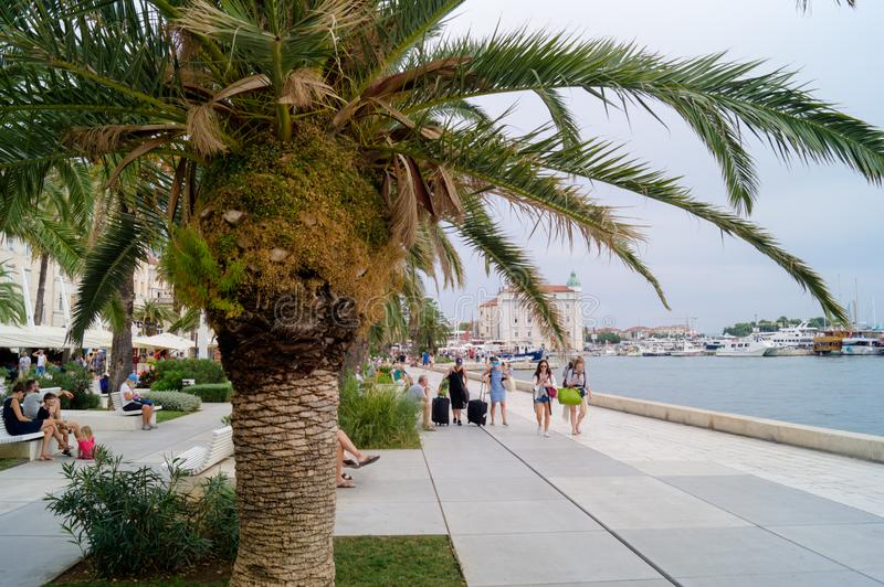 Splittring Dalmatia croatia 09/06/2018: Splittring Dalmatia, Kroatien; 09/07/2018: Flickor som sitter på momenten arkivbilder