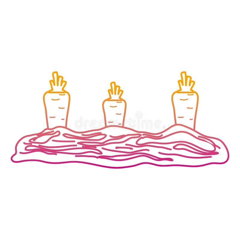 Spodlony kreskowy zdrowy marchwiany świeży warzywo kultywujący ilustracja wektor