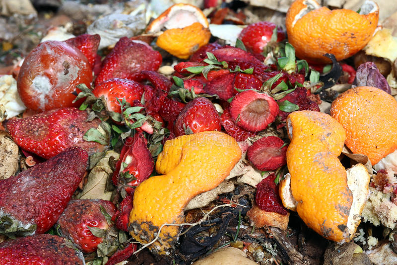 Spoiled fruit on a trash heap. royalty free stock photo