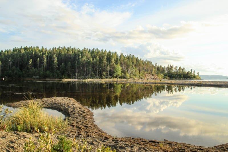 Spokój i gładzi wodę jezioro w którym odbijamy chmury i las zdjęcia royalty free