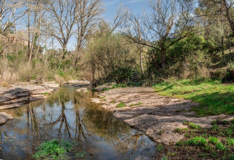 Spokój rzeka między roślinnością zdjęcie stock