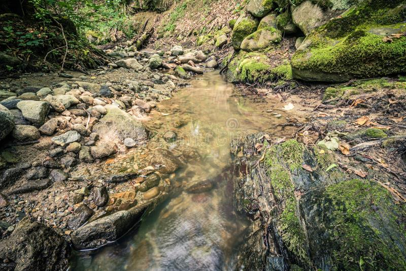 Spokój woda rzeczna w halnym lesie zdjęcia stock