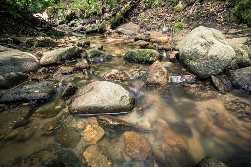 Spokój woda rzeczna w halnym lesie zdjęcie royalty free