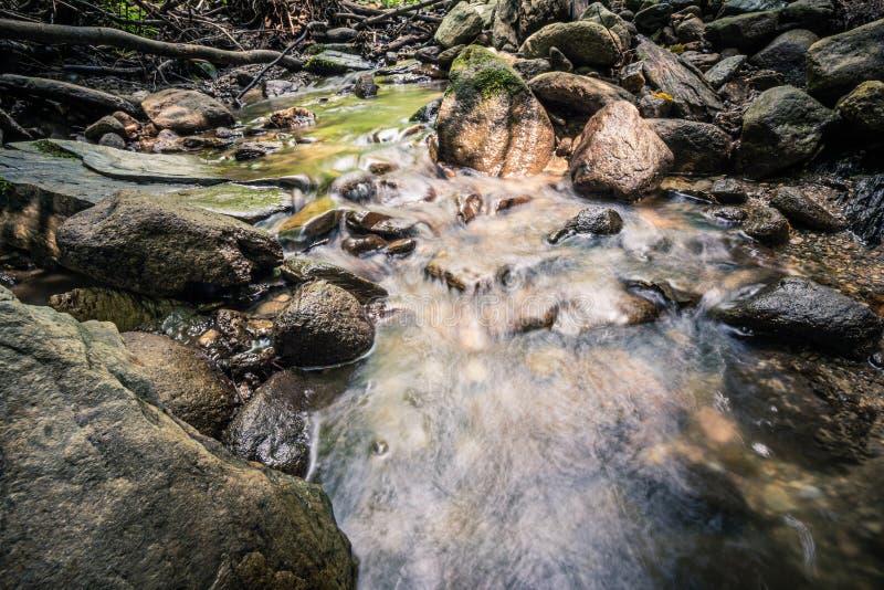 Spokój woda rzeczna w halnym lesie zdjęcie stock