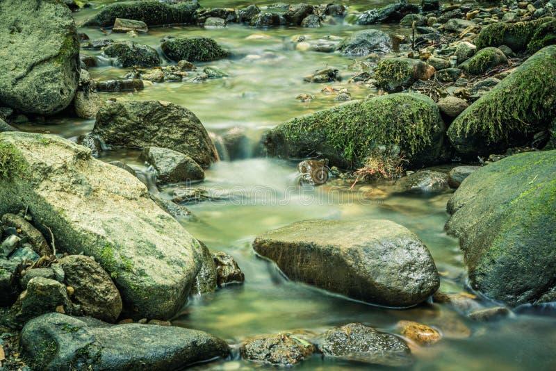 Spokój woda rzeczna w halnym lesie obraz stock