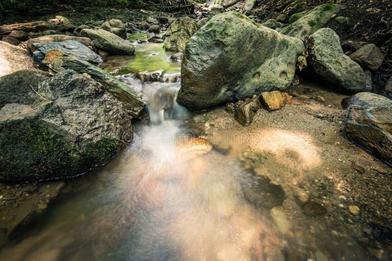 Spokój woda rzeczna w halnym lesie zdjęcia royalty free
