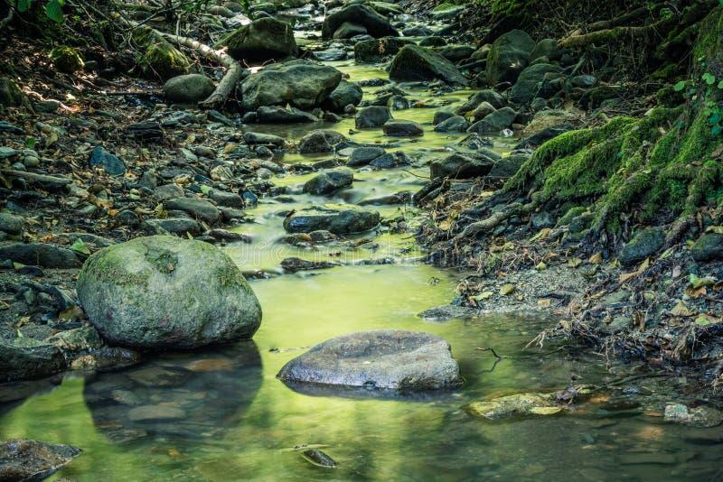 Spokój woda rzeczna w halnym lesie obrazy stock