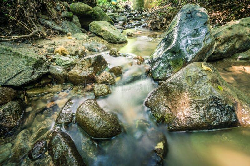 Spokój woda rzeczna w halnym lesie obraz royalty free