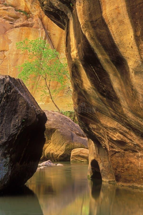 spokojów przesmyków basenu rzeki dziewicy zdjęcie stock