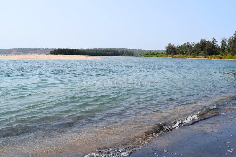 Spokojna artykuły plaża z Czystą błękitne wody, drzewami i wyspą, obraz royalty free