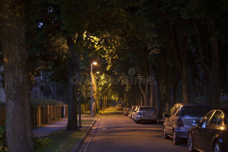 Spokojnej ulicy aleja przy opóźnioną ciemną nocą zdjęcie royalty free