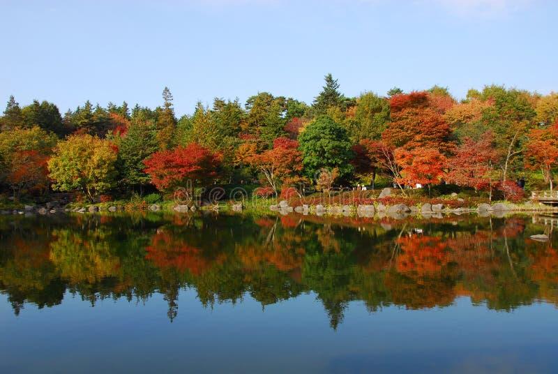 Spokojny jeziorny jesieni ulistnienie fotografia stock