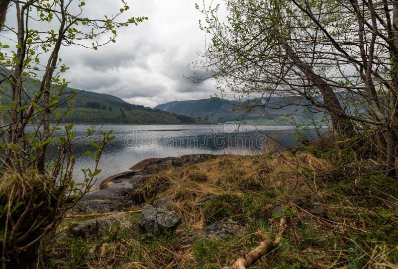 Spokojny jezioro na markotnym dniu po deszczu zdjęcie royalty free