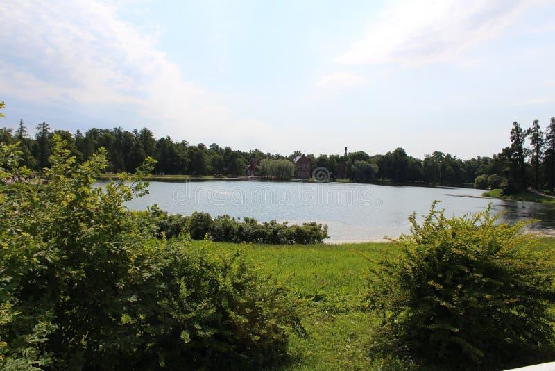 Spokojny jezioro z udziałami drzewa i krzaki obrazy royalty free