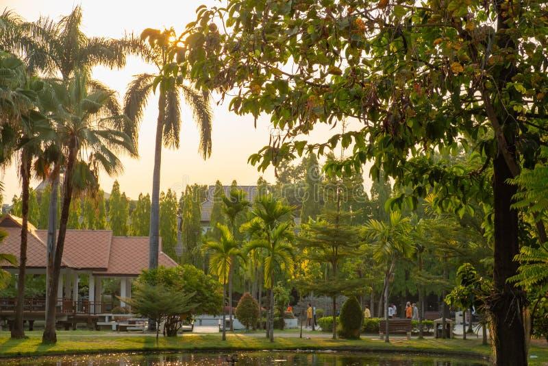 Spokojny park w centrum miasta podczas wschód słońca czasu fotografia stock