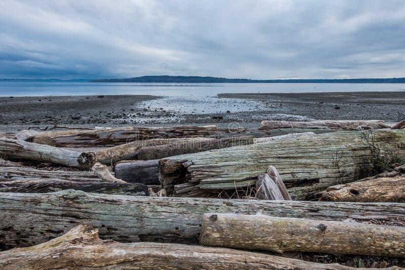 Spokojny Puget Sound Przy Niskim przypływem obraz stock