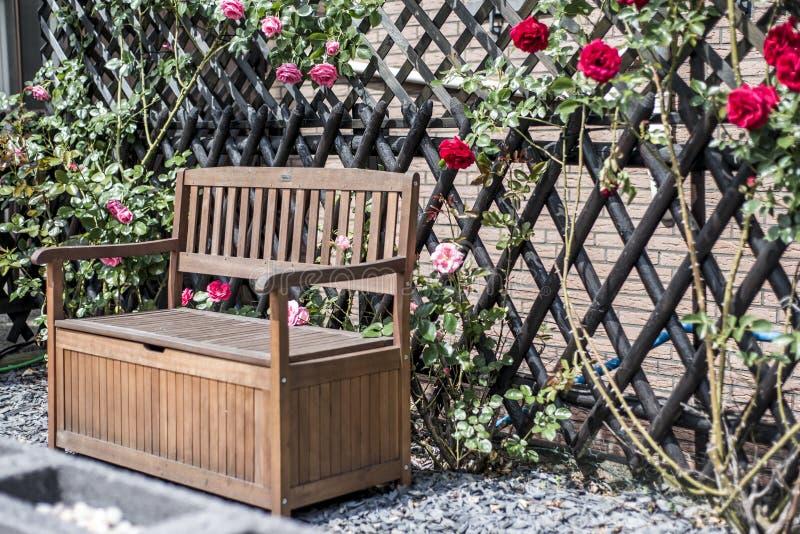 Spokojny relaksuje romantyczną ogrodową ławkę otaczającą czerwień i menchii róże kwitną krzaki zdjęcie stock