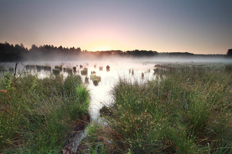 Spokojny wschód słońca na mglistym cumuje obraz royalty free