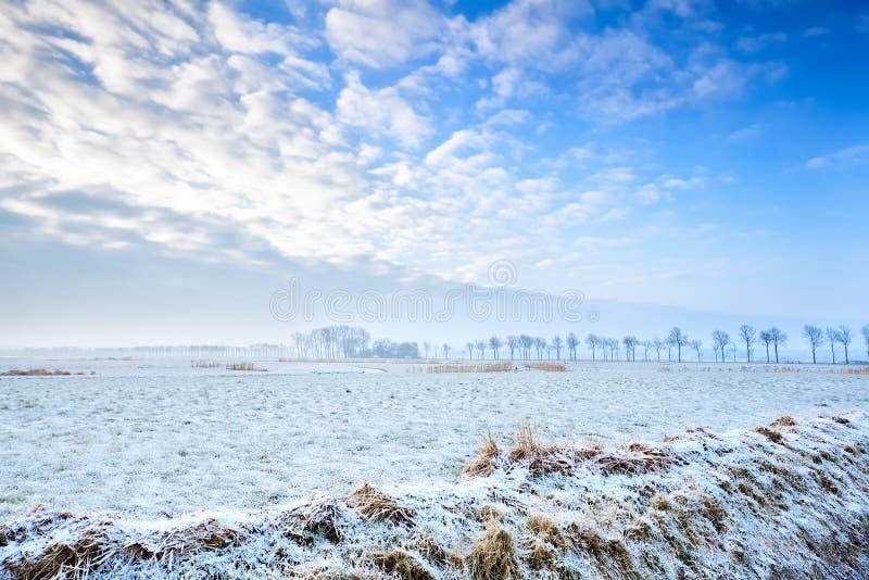 Spokojny zima krajobraz obrazy royalty free