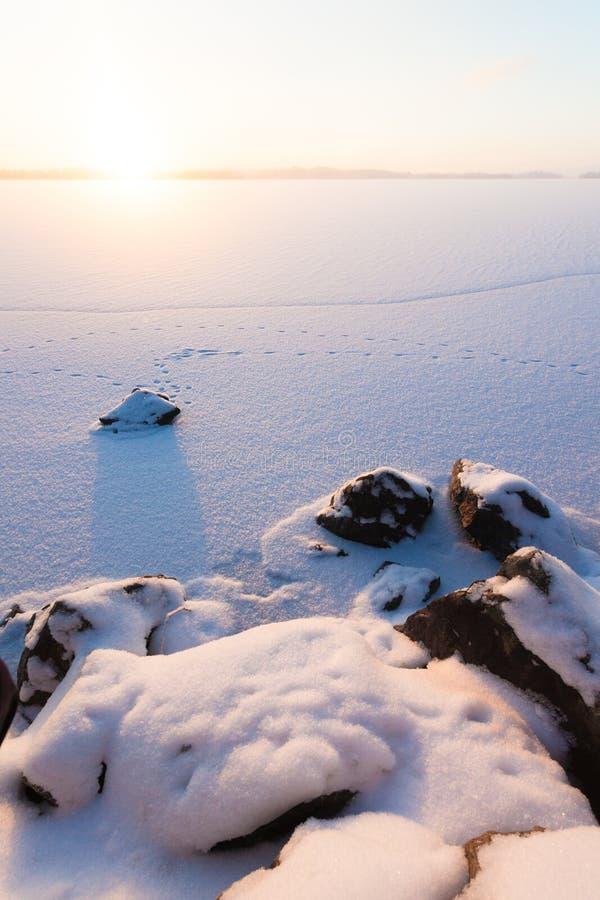 Spokojny zima ranku widok zamarznięty jezioro obraz stock