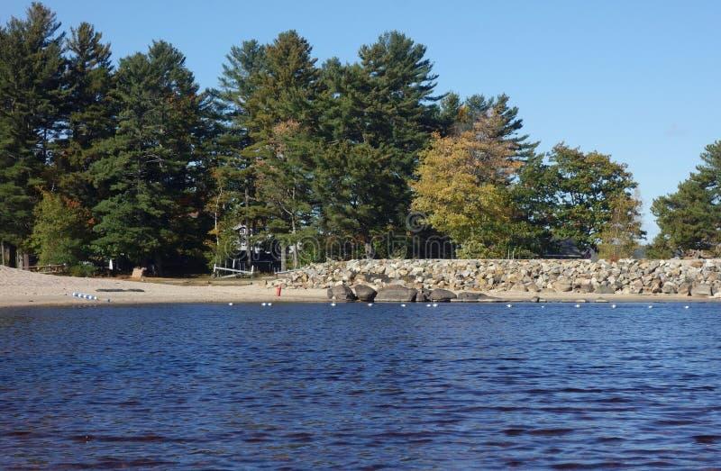 Spokoju Maine usa jesieni piaskowatej plaży żółci liście zgłębiają - zielonych drzewa zdjęcia stock