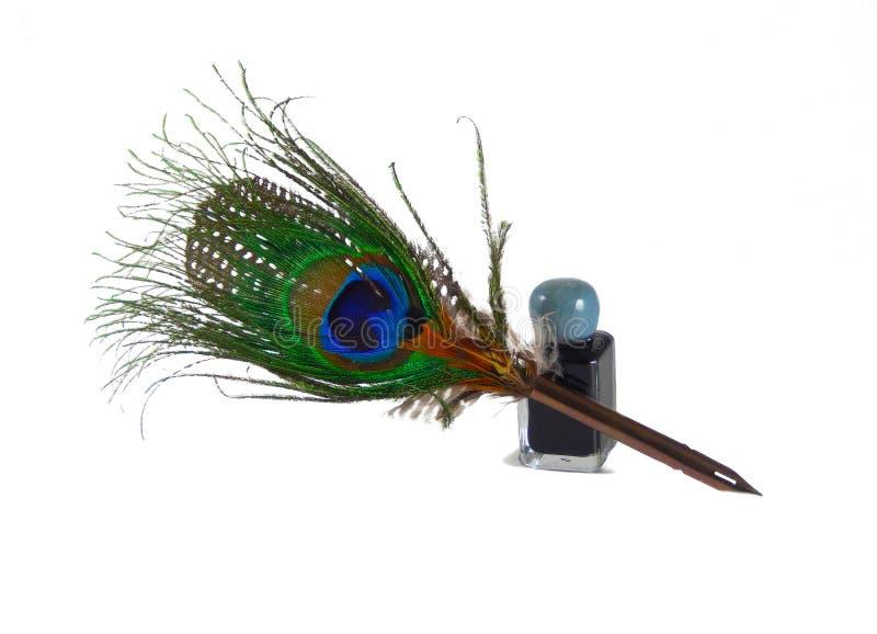 Spoletta e calamaio della piuma del pavone isolati su bianco immagini stock libere da diritti