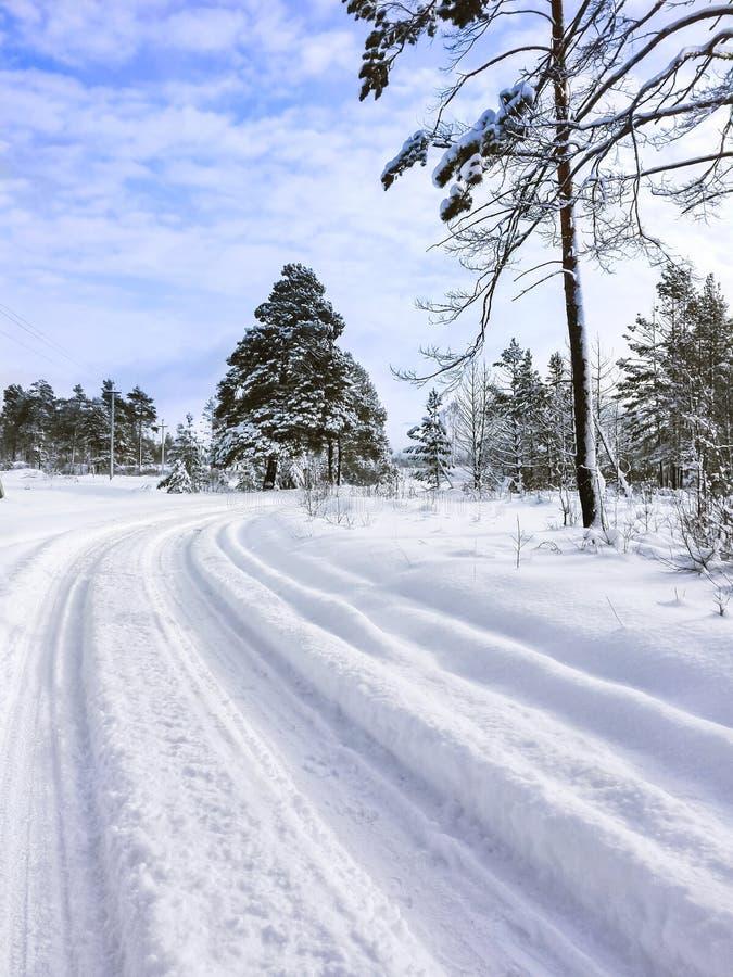 Spolning för landsväg i djup snö till och med skogen på en kylig vinterdag Altai berg, Kasakhstan royaltyfri foto