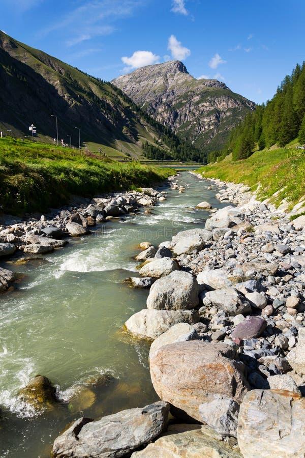 Spolrivier die in Meer Livigno, de Bergachtergrond stromen van Corno Brusadella royalty-vrije stock afbeeldingen