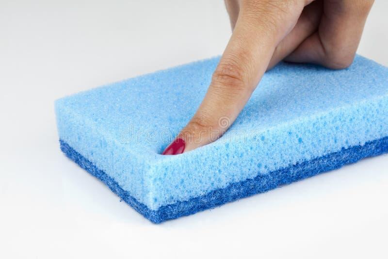Download Sponge stock photo. Image of softness, porous, human - 20451640