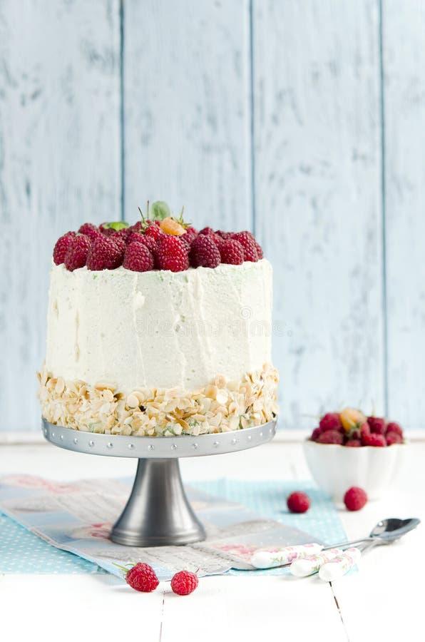 Sponge cake with raspberry royalty free stock photos
