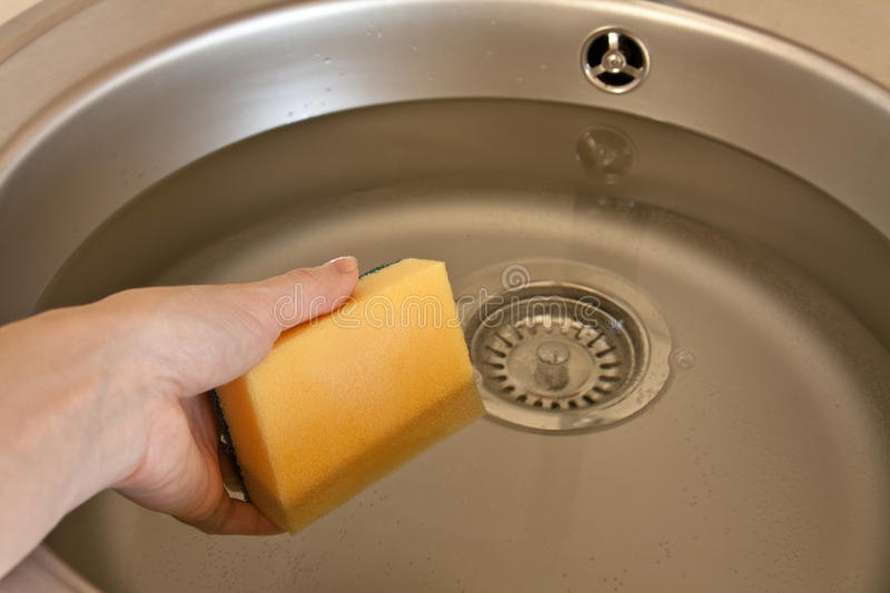 Download Sponge in hand stock image. Image of interior, rinse - 17252911