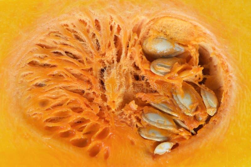 Sponge like pumpkin cross internal section with structure and seeds. Sponge like orange organic pumpkin cross internal section with structure and seeds like a stock photo