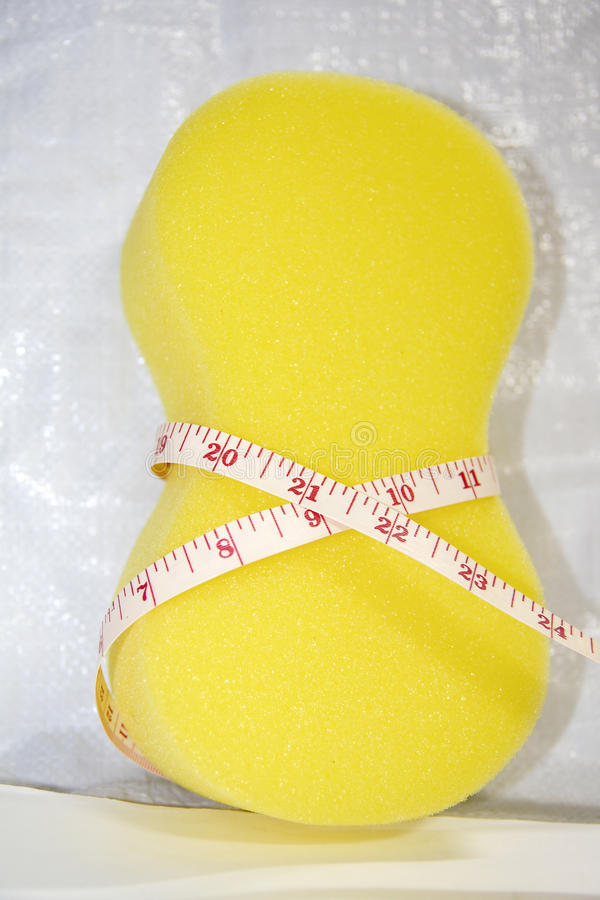 Sponge With Slender Shape Concept Royalty Free Stock Image