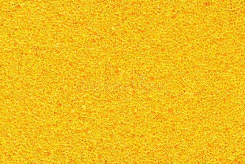 Sponge Texture Royalty Free Stock Photography