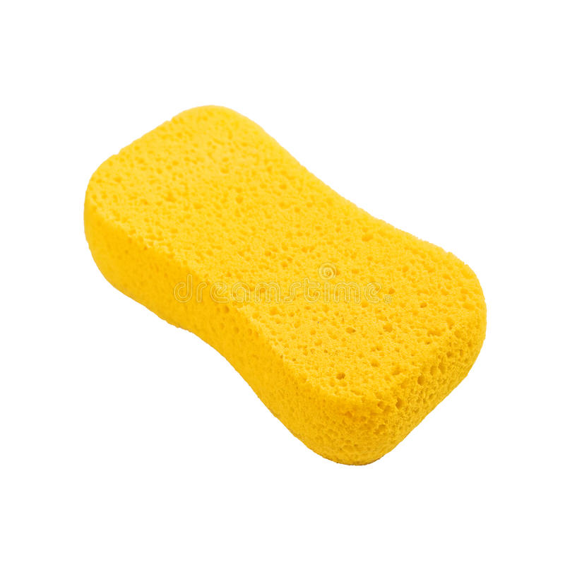 Download Sponge stock photo. Image of isolated, clean, object - 31313062