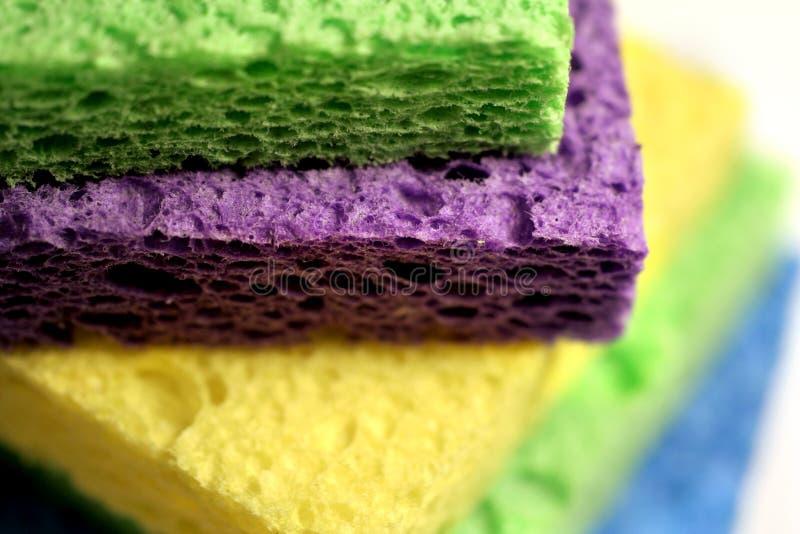Download Sponges stock image. Image of moisten, marine, water, fibrous - 171227
