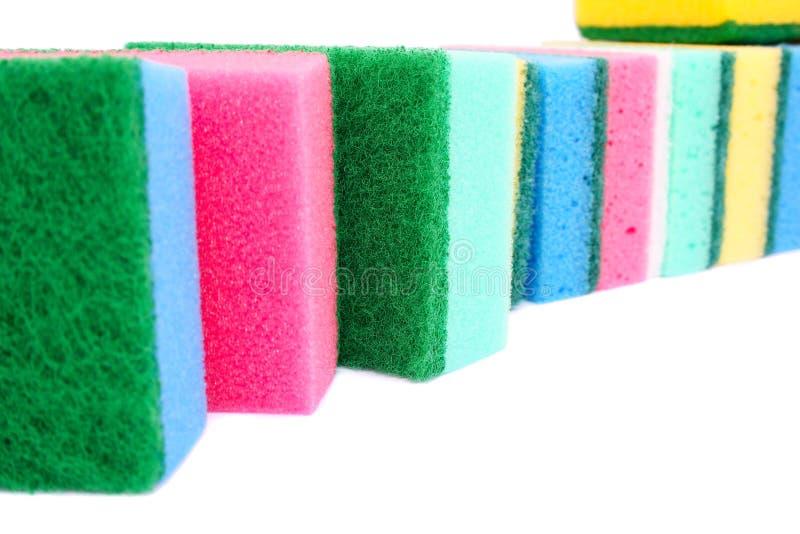 Sponges stock photos