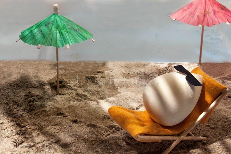 Spons voor samenstelling in zonnebril, op een ligstoel royalty-vrije stock foto
