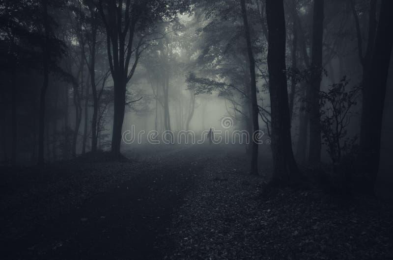 Spook in donker bos met mist op Halloween royalty-vrije stock foto