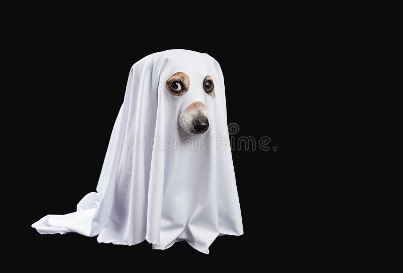spook op zwarte achtergrond De carnaval partij van Halloween stock afbeelding