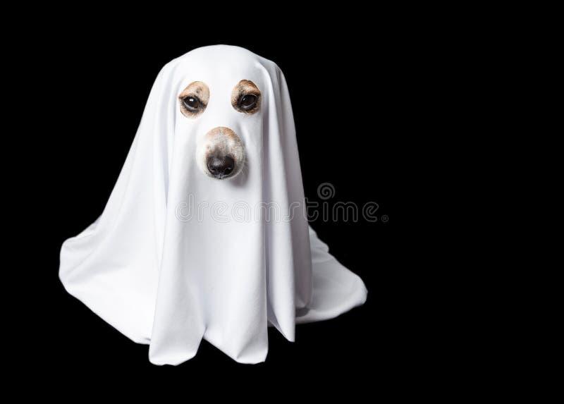 spook op zwarte achtergrond De carnaval partij van Halloween stock foto