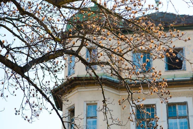 Spookhuis in de stad Verlaten en Geruïneerd stock fotografie