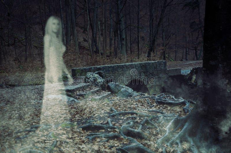 Spookvrouw in Bos vector illustratie