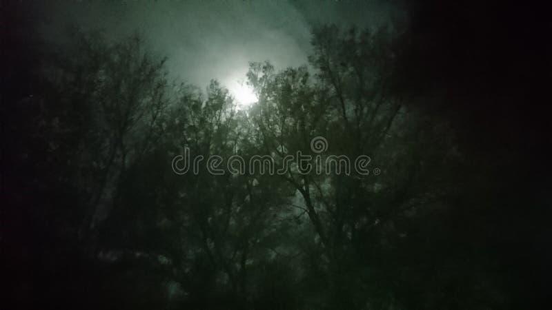 Spooky1 库存图片