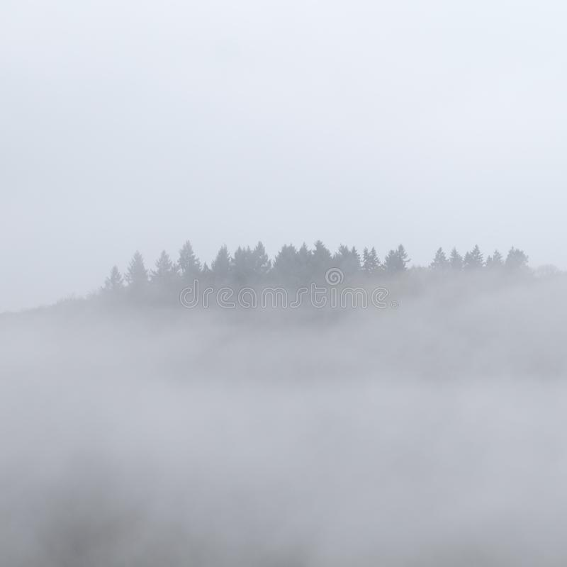 Supernatural Floating Foggy Forest. Spooky, dark, magical, fairy tale, floating forest above the medieval Burg Eltz castle near Moseltal, Rheinland-Pfalz Germany stock images