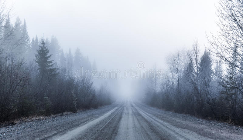 Spooky Fog and Bad Visibility on a Rural Road in Forest royalty free stock images